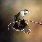 King Bird by Kathy Weaver