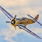 Curtiss P-36C Hawk 38-210 N80FR by Colin Smedley