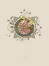 Celtic Initial O by Thoth Adan