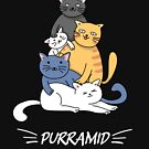 Purramid - Cute Cats Pyramid by mrhighsky