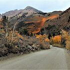 On The Road To Color – Bishop Creek Canyon, Inyo County, CA by Rebel Kreklow