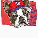 Boston Sports Bawstin Baseball Dog by MudgeStudios