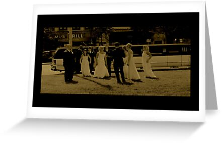 Wedding Party by Diana Briscoe