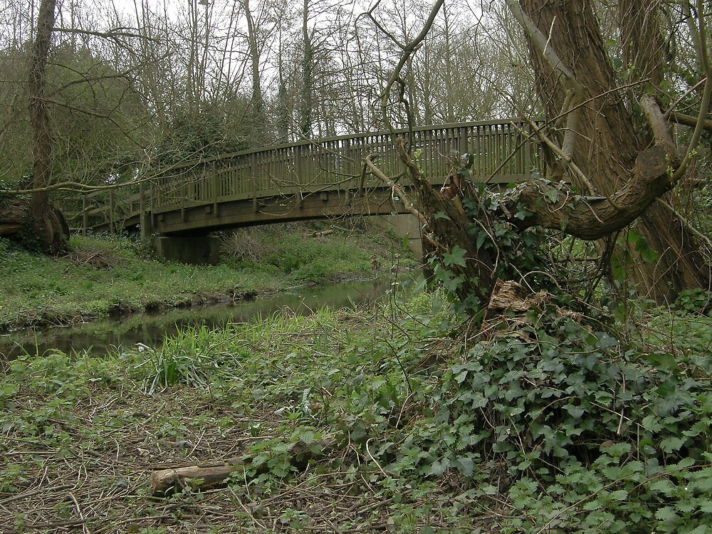 A Bridge to Nowhere On A Gloomy Day by Michael Redbourn