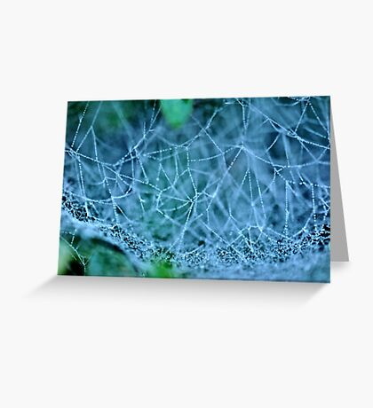Spider's Water Web Greeting Card