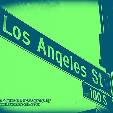 Los Angeles Street TURTLE Los Angeles California by Mistah Wilson Photography by MistahWilson