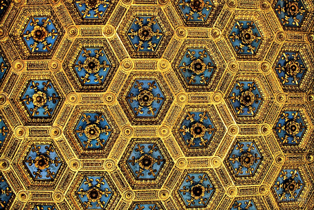 Palazzo Vecchio. Ceiling by andreisky
