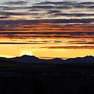 Chinook Evening II by Al Bourassa