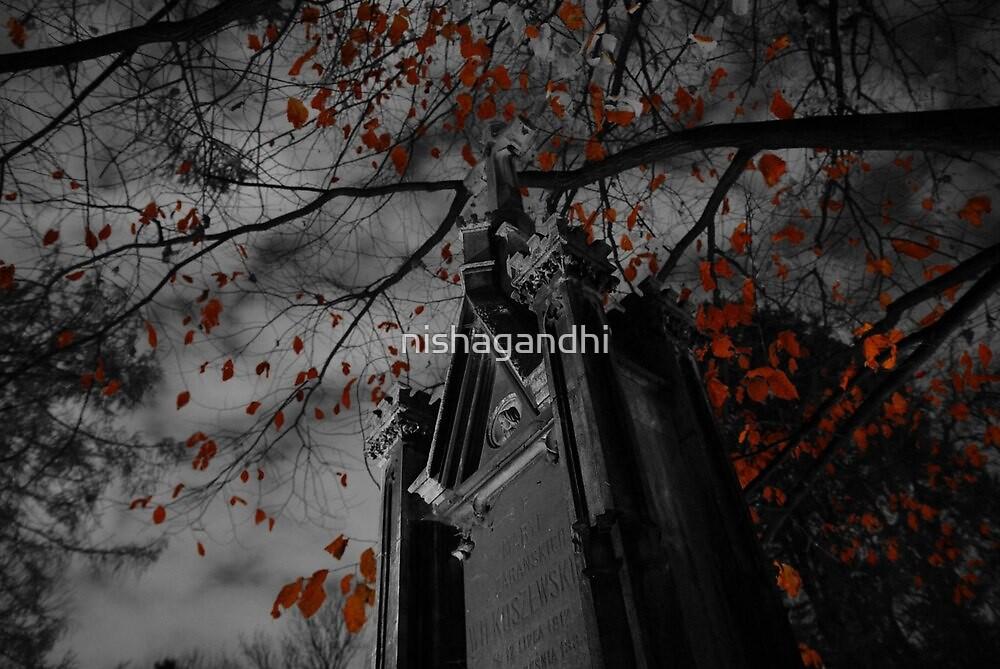 Red leaves by nishagandhi