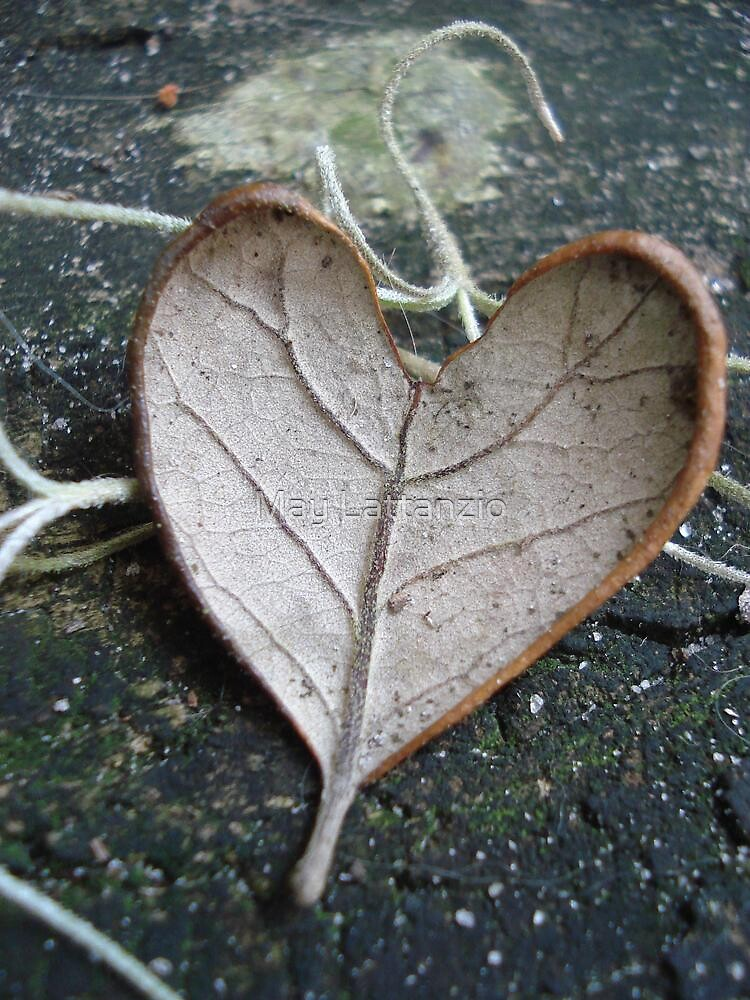 "The ""I Love You"" Leaf by May Lattanzio"