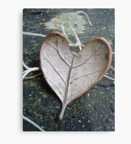 "The ""I Love You"" Leaf Metal Print"