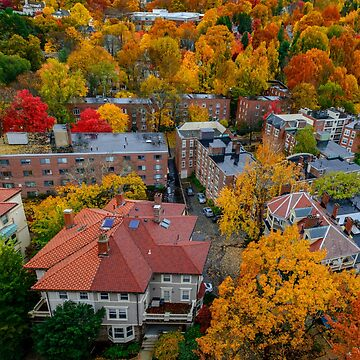 Brookline fall panorama - view on Beaconsfield by LudaNayvelt