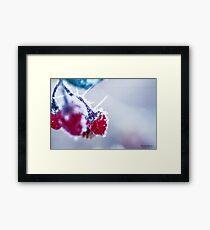 Winters Frostbitten Kiss Framed Print
