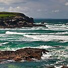 Cornish coastline by Steve plowman