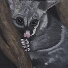 Twinkle-Toes: The Brushtail Possum by NyreeMason