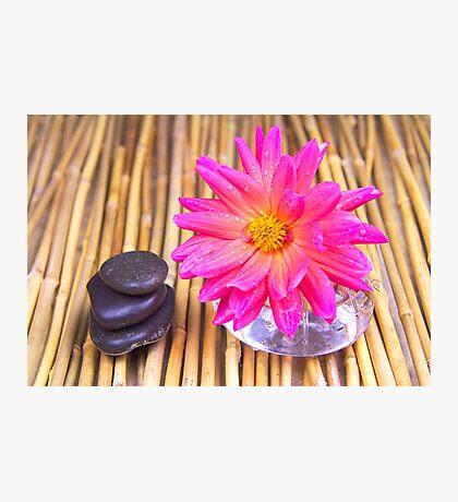 Tranquil Zen Stones And Dahlia Photographic Print