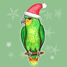 Christmas amazon parrot by Bwiselizzy