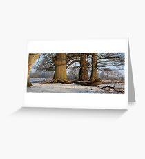 www.lizgarnett.com - Oak trees in Mersham le Hatch Deer Park Greeting Card
