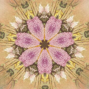 Mixed Bouquet - Kaleidoscope Abstract by CJAnderson