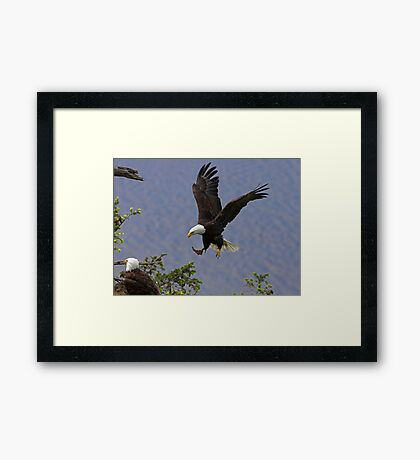 Home with Lunch Framed Print