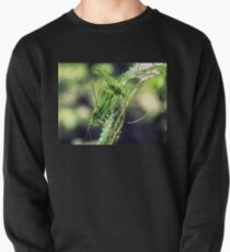 HDR Pullover