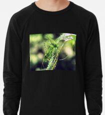 HDR Lightweight Sweatshirt