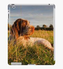 Spinone Puppy Sunset iPad Case/Skin