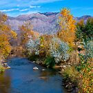 Autumn At Ogden River by Len Bomba