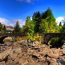 Bridge at Dochart Falls by Tom Gomez