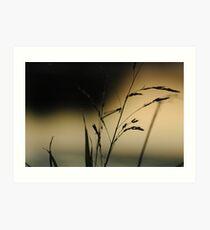 """Very Grassy"" (1/13) Art Print"