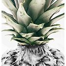 Splash Pineapples  by fonzyhappydays