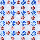 Round Disc Red White Blue by dkatesmith