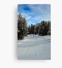 White snow blue sky Canvas Print