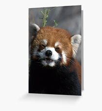 PLEASE ! Greeting Card