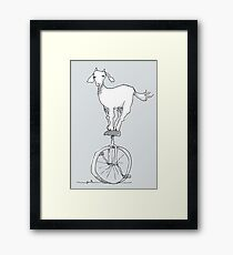 Goat on a unicycle Framed Print
