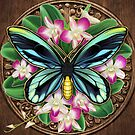 Gilded Queen Alexandria's Birdwing and Orchids by TeaToucan