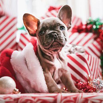 Christmas Pupperino by RedAngelDesigns