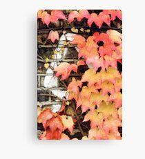 an impression of autumn Canvas Print