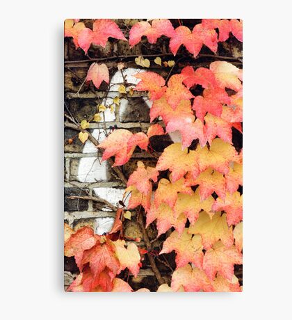 an impression of autumn Canvas Print