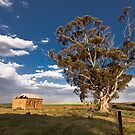 Spring Sun and Distant Rains by Paul Thompson