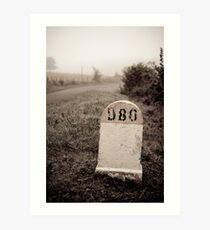 D80 landmark Art Print