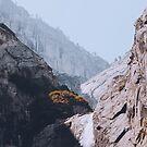 Yosemite Fall by Pascal Deckarm