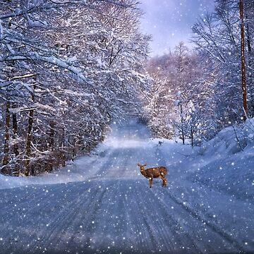 One Snowy Winter Morning by kdxweaver
