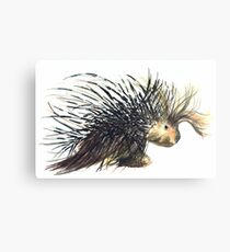 Coldprickly, a children's book story and illustration Canvas Print