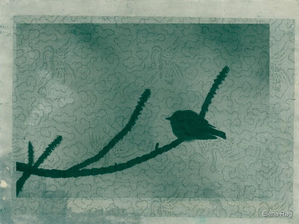 Little Bird On Pine Branch by Elena Ray
