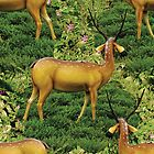 pretty deers playing in the forest by hutofdesigns