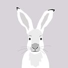 Hare by KortoGott