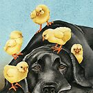 Chick Magnet by Tracy Lizotte