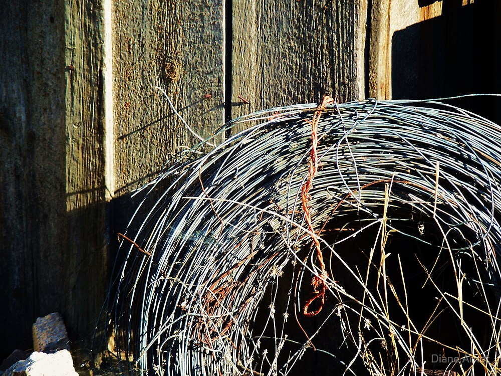 Old Bailing Wire Holding Up Old Shed.....The shed is since gone!! by Diane Arndt