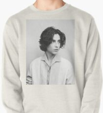 Timothee Chalamet Pullover